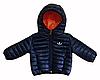 Куртка с капюшоном демисезонная AdsBilateral
