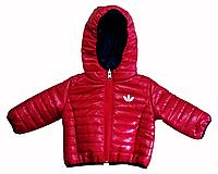 Куртка с капюшоном демисезонная Bilateral