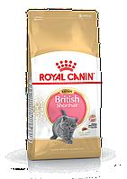 Сухой корм 10 кг для котят породы британская короткошерстная Роял Канин / KITTEN BRITISH SHORTHAIR Royal Canin