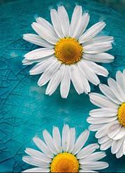 Настенный обогреватель-картина Shine Ромашки 84x60 см