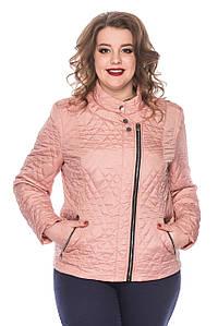 Весенняя женская куртка батал