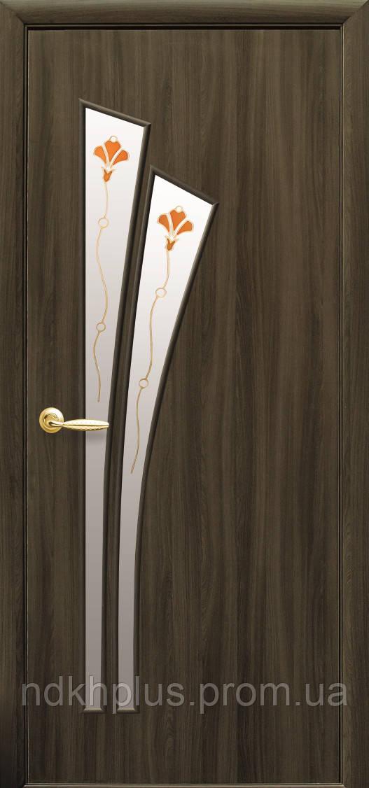 Двери межкомнатные Лилия со стеклом сатин с рисунком