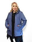 Демисезонная утепленная куртка. Новая коллекция QARLEVAR ВЕСНА -20183XL-7XL, фото 4