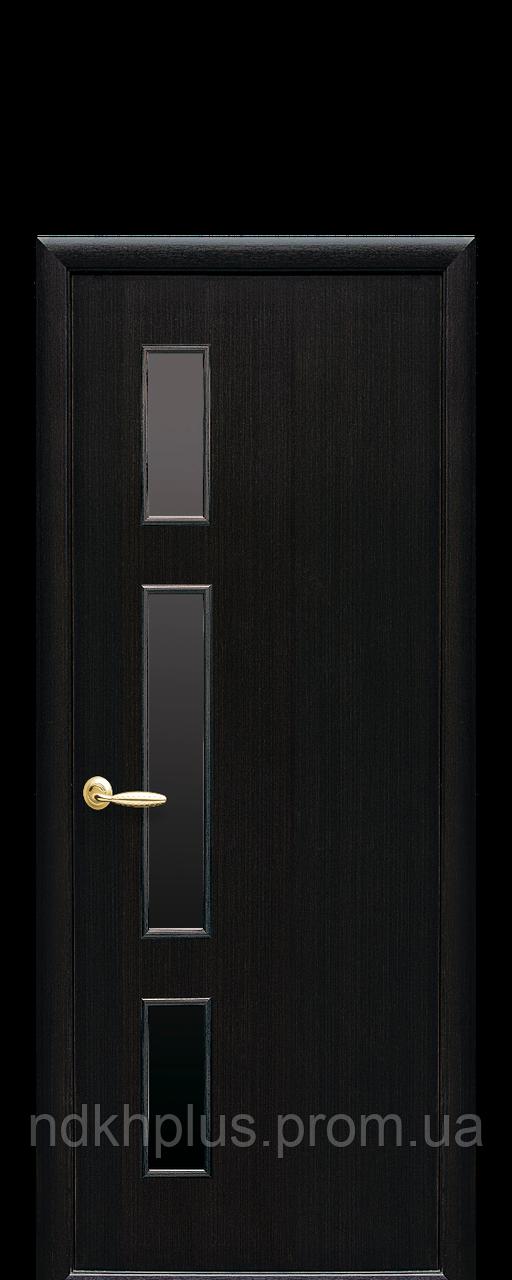 Двери межкомнатные Герда с черным стеклом
