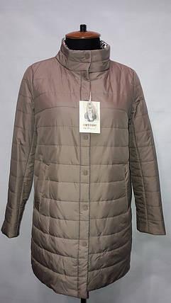 """button""-демисезонная куртка 80-586, фото 2"