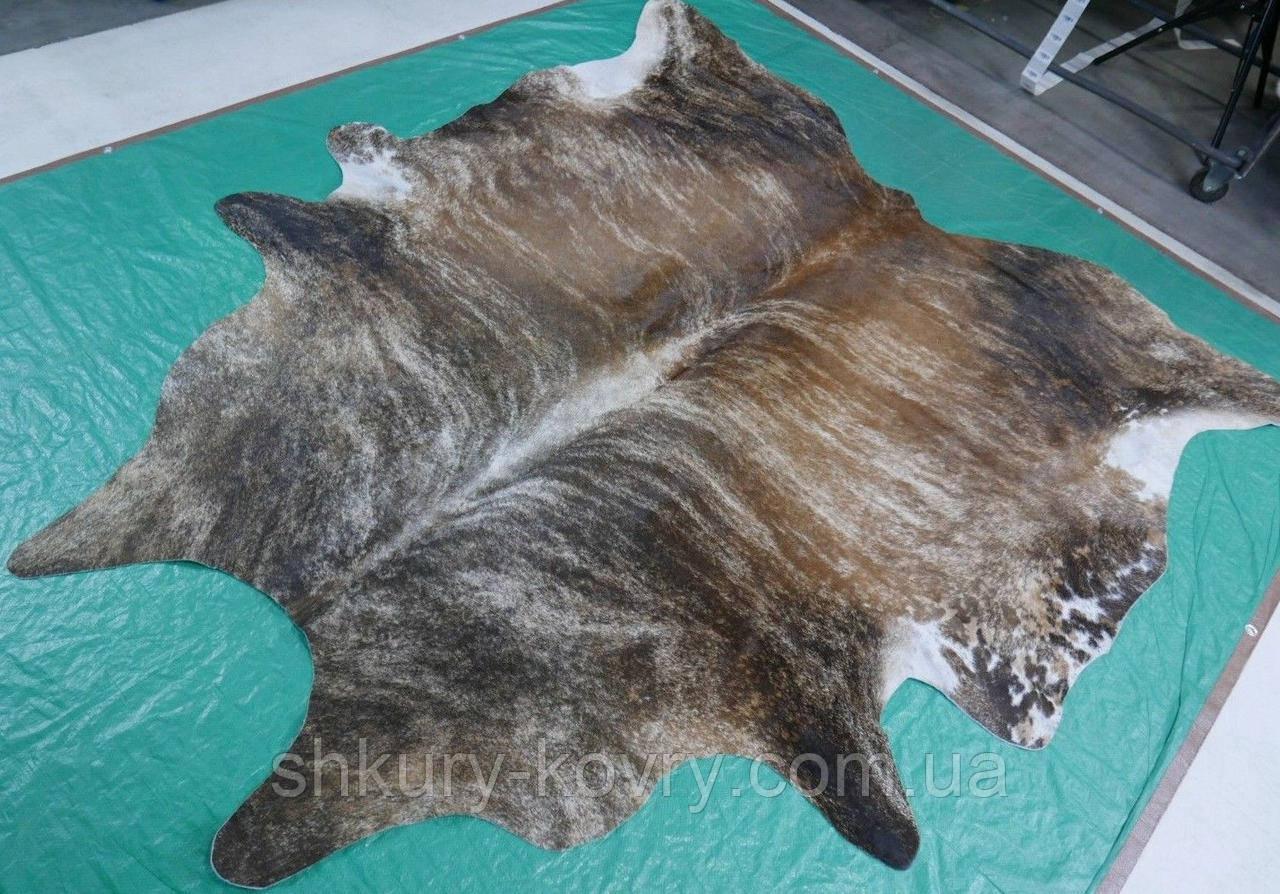 Купить натуральную серо коричневую шкуру коровы в Суммах