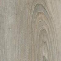 Ламинат Alsapan коллекция presto8, цвет-153 дуб кельтский