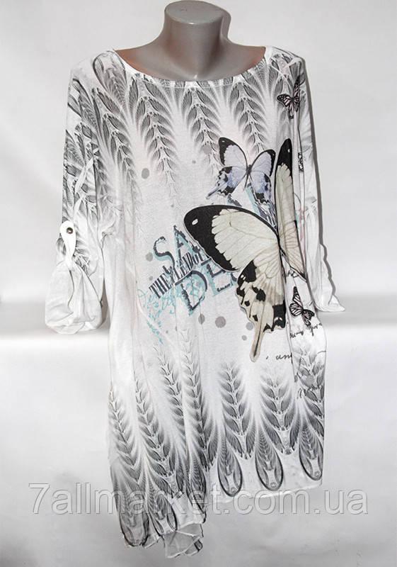 """Туника женская полубатальная с бабочками, размер 52-56 (4 цвета) Серии """"ITALIA"""" купить оптом в Одессе на 7 км"""