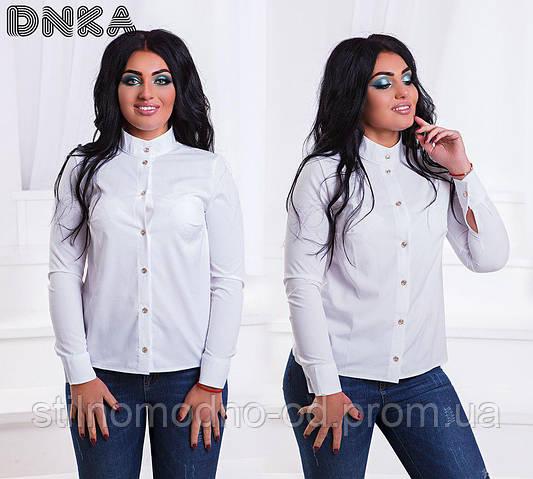 Блузка- рубашка для пышных дам