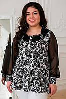 Женская красивая блуза Габби черно-белая