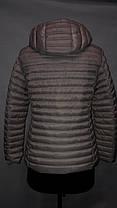 """""""Яблоко""""-демисезонная куртка 317 В жемчуг, фото 2"""