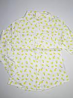 GCS1038, Glo-story, Рубашки для девочек, {есть:104,110,98}