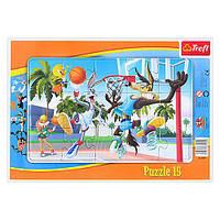 "Пазл ""15 Рамкові"" - Баскетбольний матч / Looney Tunes"