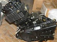 Запчасти мотоцикл Skymoto Dragon 200
