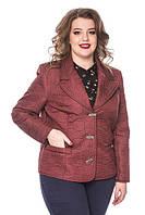 Класична демісезонна куртка піджак великих розмірів 50-52 батал, фото 1
