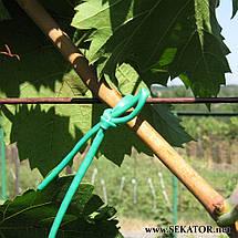 Кембрик для підв'язки рослин (агрошнурок) Grond Meester, 1 кг (Італія), фото 3