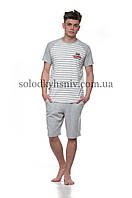 Піжама чоловіча ELLEN шорти+футболка Сіра Смужечка Ч-017 001 b3a0e91f74ade