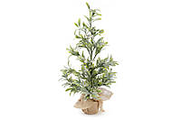 Декоративное дерево Омелы 60см в инее