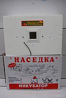 Инкубатор Наседка 100 яиц с механическим переворотом, фото 1