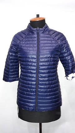 """""""Яблоко""""-демисезонная куртка 8002 В, фото 2"""