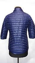 """""""Яблоко""""-демисезонная куртка 8002 В, фото 3"""