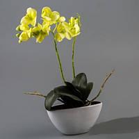 Орхидея (силикон).
