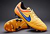 Бутсы Nike Tiempo Legend V FG  631518-858