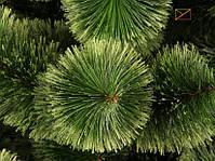 Новогодняя елка Сосна искусственная Пушистая 1,8 м (180 см), фото 2