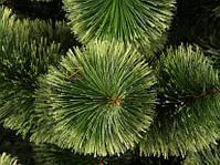 Новогодняя елка Сосна искусственная Пушистая 0,9 м (90 см), фото 2