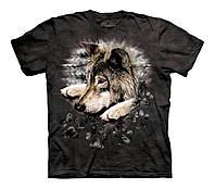 3D футболка для мальчика The Mountain р.M 5-6 лет футболки детские с 3д принтом рисунком Окрас Волка