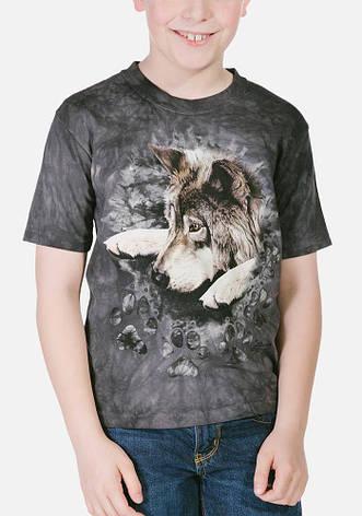 3D футболка для мальчика The Mountain р.M 5-6 лет футболки детские с 3д принтом рисунком Окрас Волка, фото 2