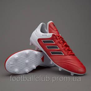 Adidas Copa 17,3 FG BB3555, фото 2