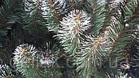 """Елка искусственная """"Lida"""" с белыми кончиками (ПВХ) 1,8м (180см), фото 4"""