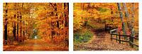 Картина принт 90см Осенний лес, 2 вида