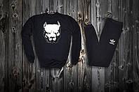 Трикотажный стильный костюм Pitbull logo Adidas