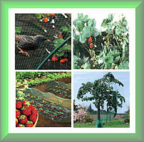 Защитная сетка от птиц NORTENE зеленая, (4х10м) Венгрия
