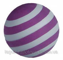 TX-34560 Мячи светящиеся  (резина) 6см  (уп.-24шт) для собак