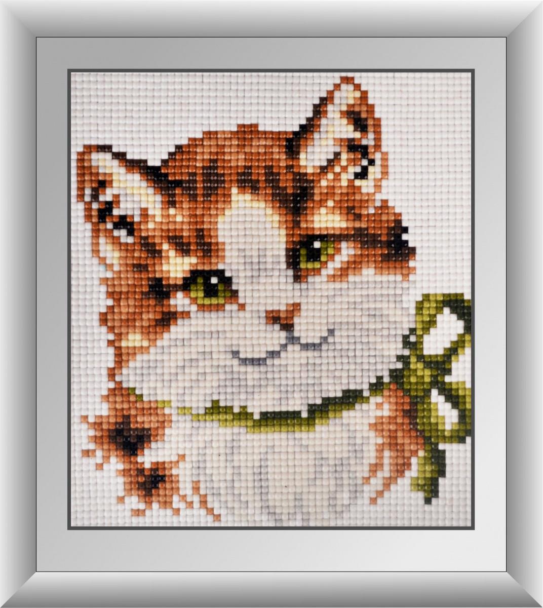 "Алмазная живопись набор R17х15 ""Зеленоглазый котенок"""
