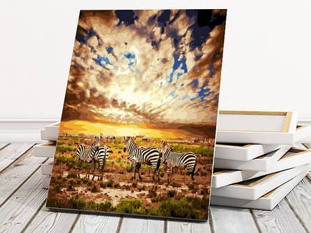"""Картина по номерам """"Зебры на пастбище"""" 40х50 см"""