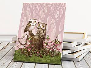 """Картина по номерам """"Влюбленные совы"""" 40х50 см"""