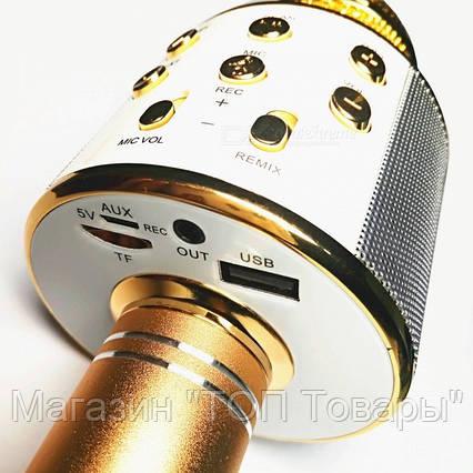 Микрофон WS-858 WESTER!Акция, фото 2