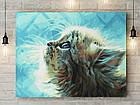 """Картина по номерам """"Пушистый котёнок"""" 40х50 см"""