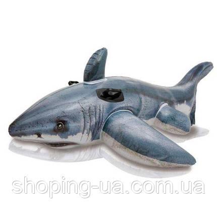 Плотик Акула с ручками Intex 57525, фото 2