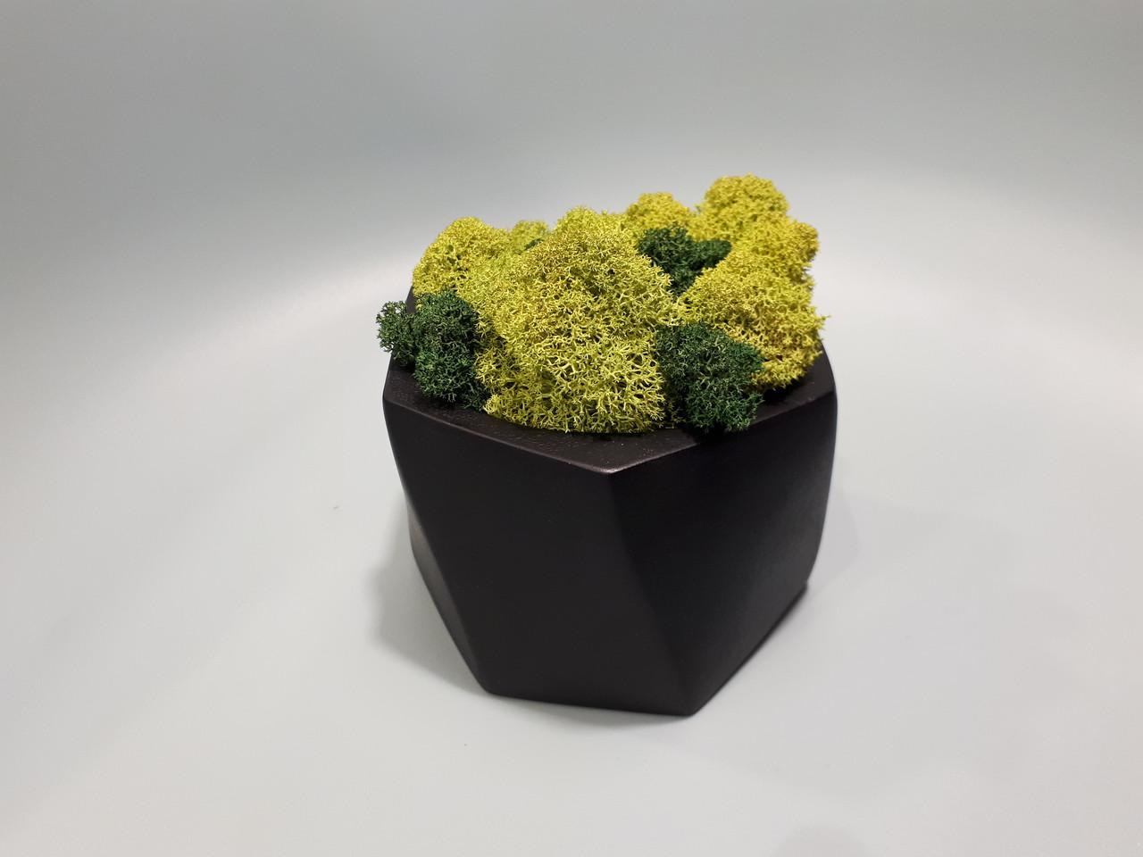 Бетонное Декоративное Кашпо для Цветов