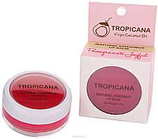 Бальзам для губ Радостный Гранат с кокосовым маслом Тропикана Virgin Coconut Oil Lip Balm Tropicana, 10 г