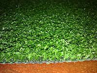 Декоративная трава Marbella Verde