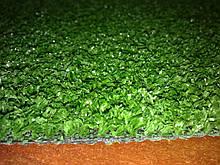 Декоративна трава Marbella Verde