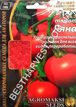 Семена томата «Ляна» 3 г, инкрустированные, фото 2