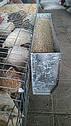 Бункерная кормушка для перепелов 50см, фото 2