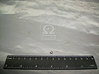 Стопор втулки КПП ГАЗ 3307,53 (пр-во ГАЗ) 52-1701120